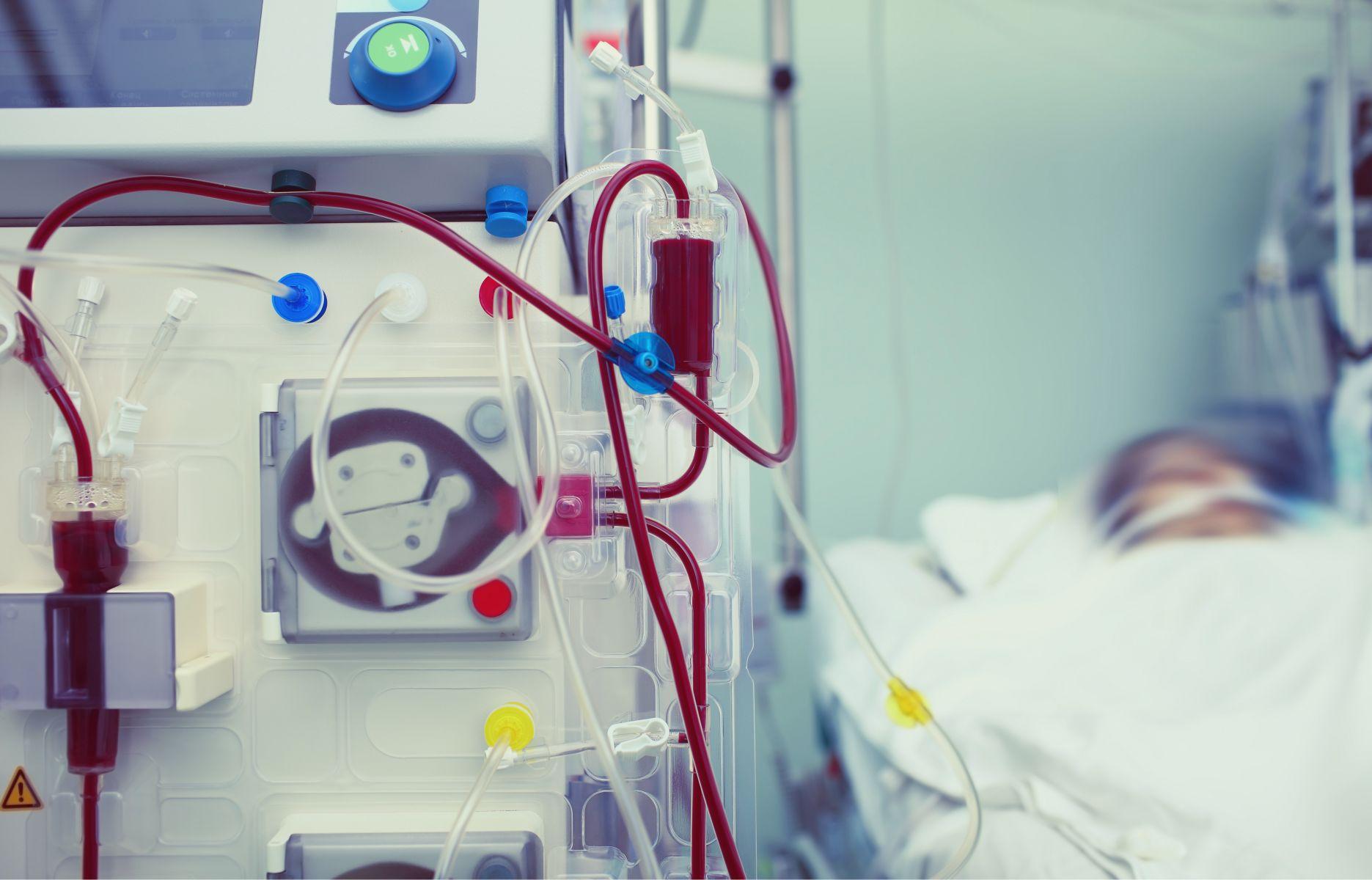 不染髮、不喝酒...腎臟科名醫公開居家養生密技,讓人生逆轉「腎」