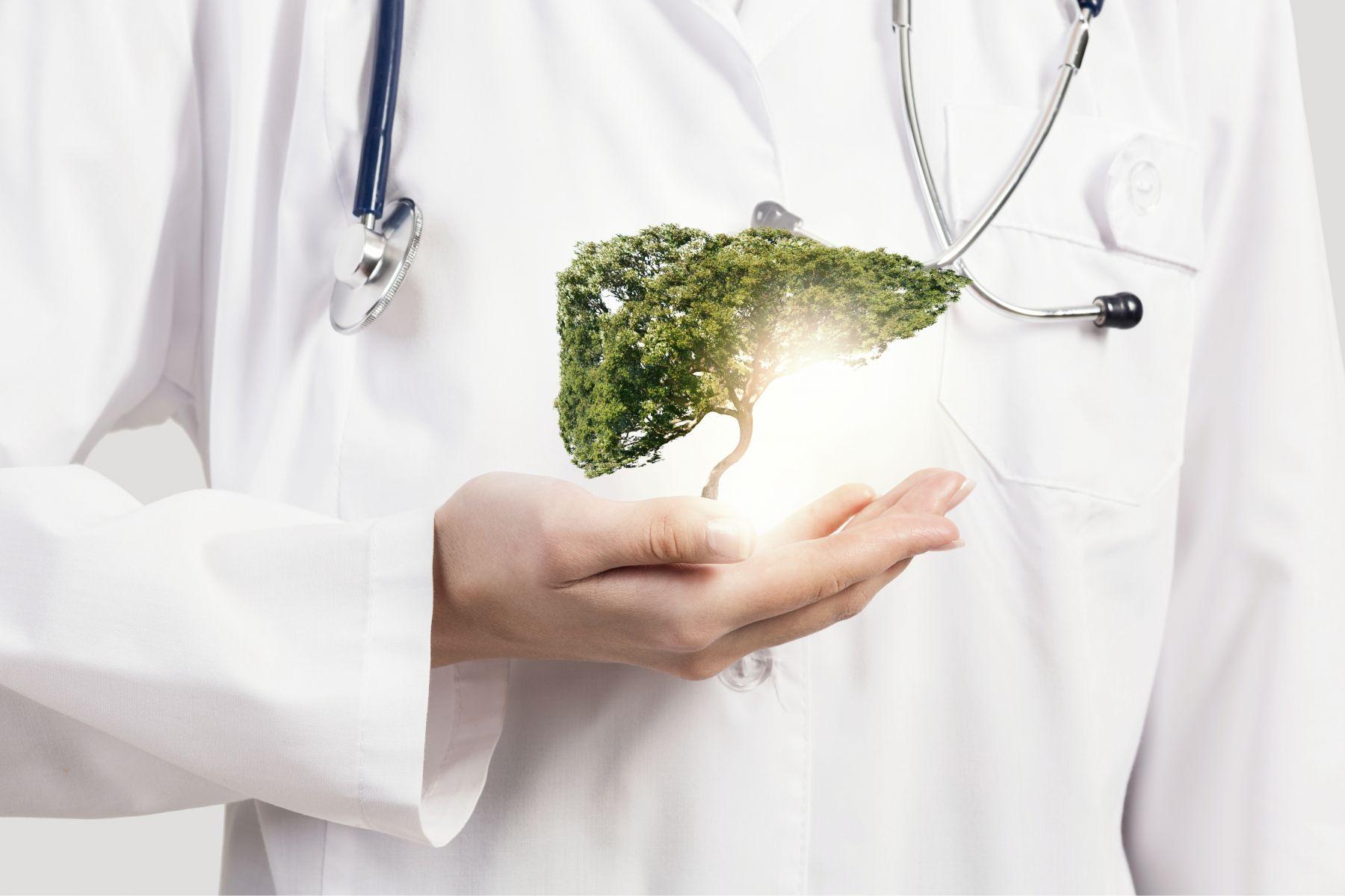 脂肪肝很可能變肝癌!網傳吃枸杞能減少脂肪肝,中醫師解答