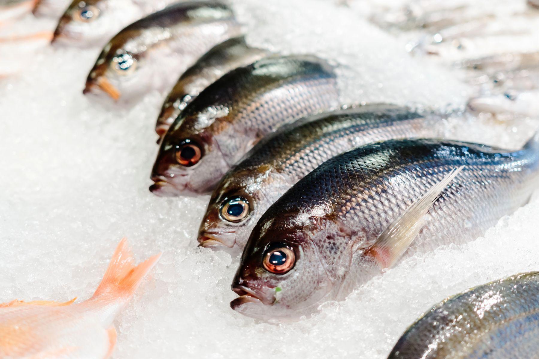 遠離肝癌!日本研究:增加魚類攝取量,有助降低肝癌風險