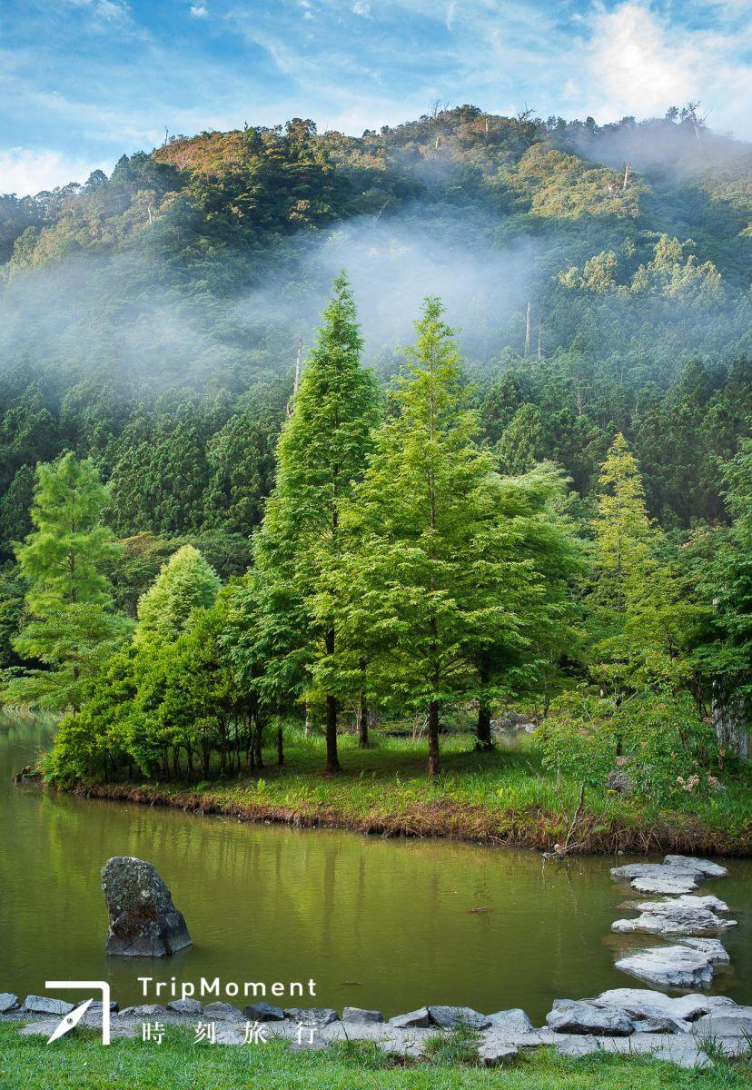 映照著周圍原始山林,閃耀其中。