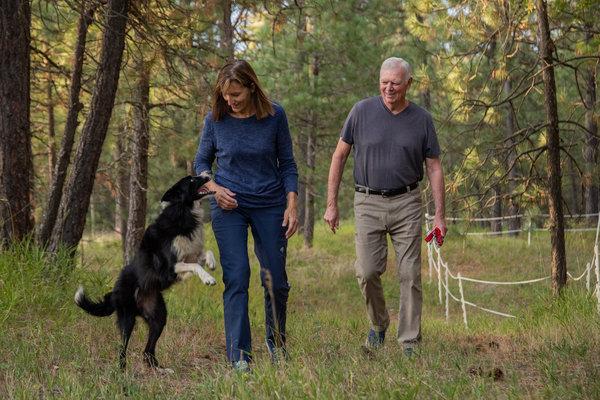 紐約時報精選》狗比錢更重要!這對夫妻辭職花57天尋回愛犬 用辦案精神抽絲每個「犯罪現場」