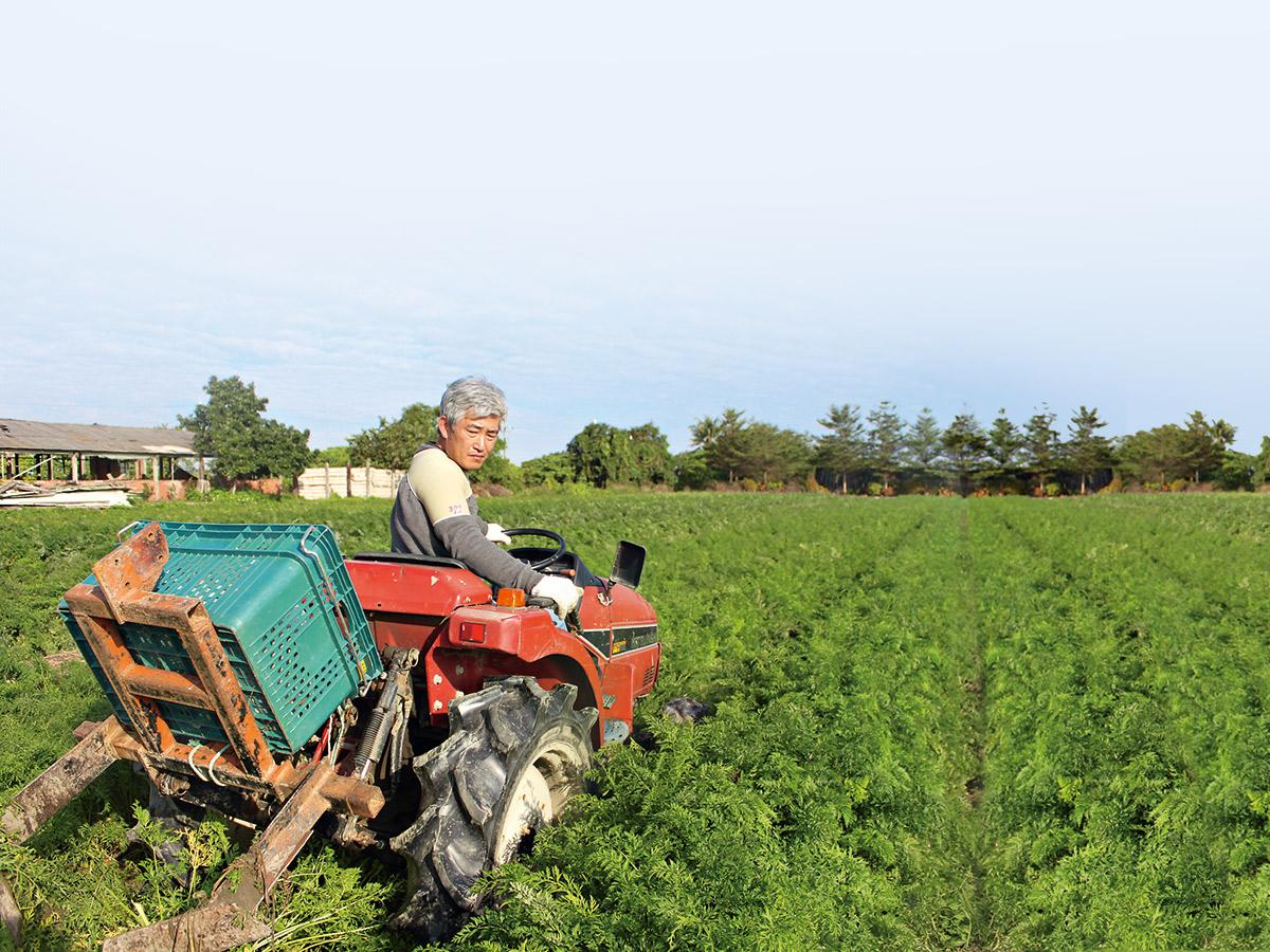 元氣家農場主要栽種者 為留日的林中智,堅持不施藥的栽種法。
