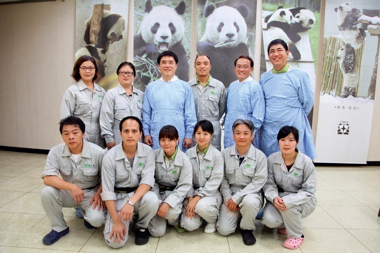 由各部門緊急加派人力支援組成的貓熊保育團隊,是初生的圓仔能恢復健康的關鍵力量。 台北市立動物園提供