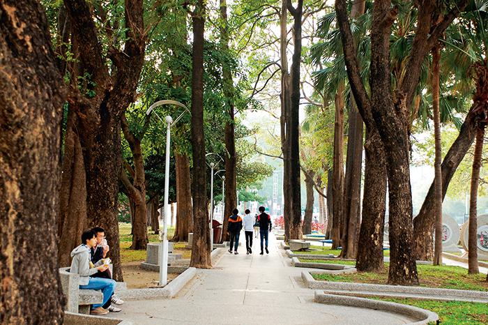 文化中心周遭有參 天綠蔭,民眾喜愛 來此散步。