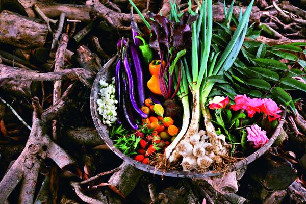 此次Alain Passard來台,也選用台灣原生種蔬菜入菜。