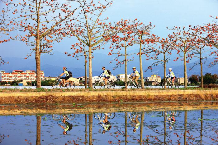 林初埤木棉道是白河的特色景點,騎車經過火紅的木棉花道是很多人喜愛的休閒。