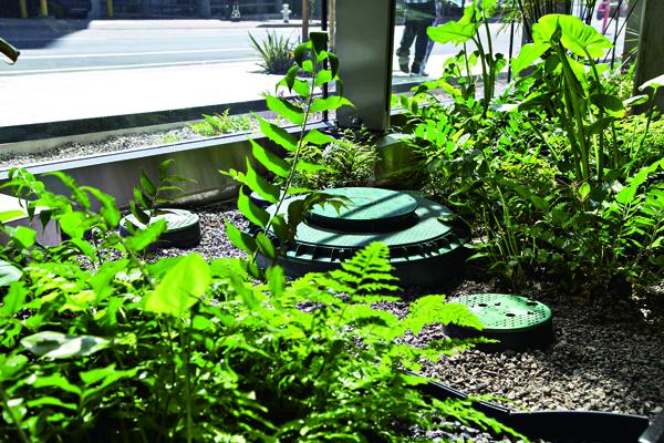 廢水百分百回收再利用 澆灌中庭園藝的水源全來自廁所廢水。