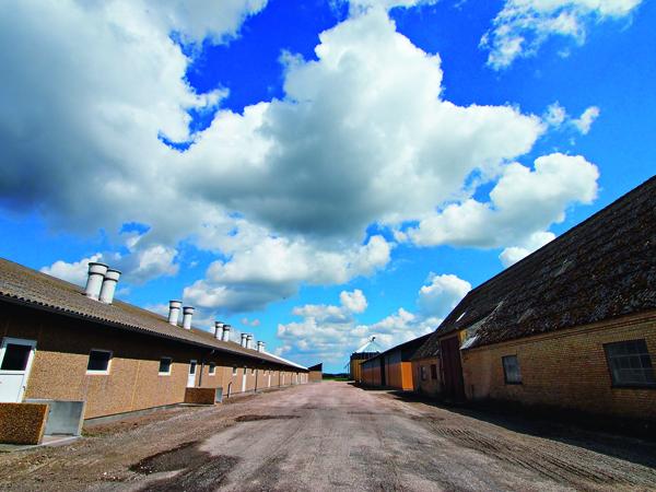 養豬場設計簡單俐落,不失工業設計大國的美名。 養豬場設計簡單俐落,不失工業設計大國的美名。