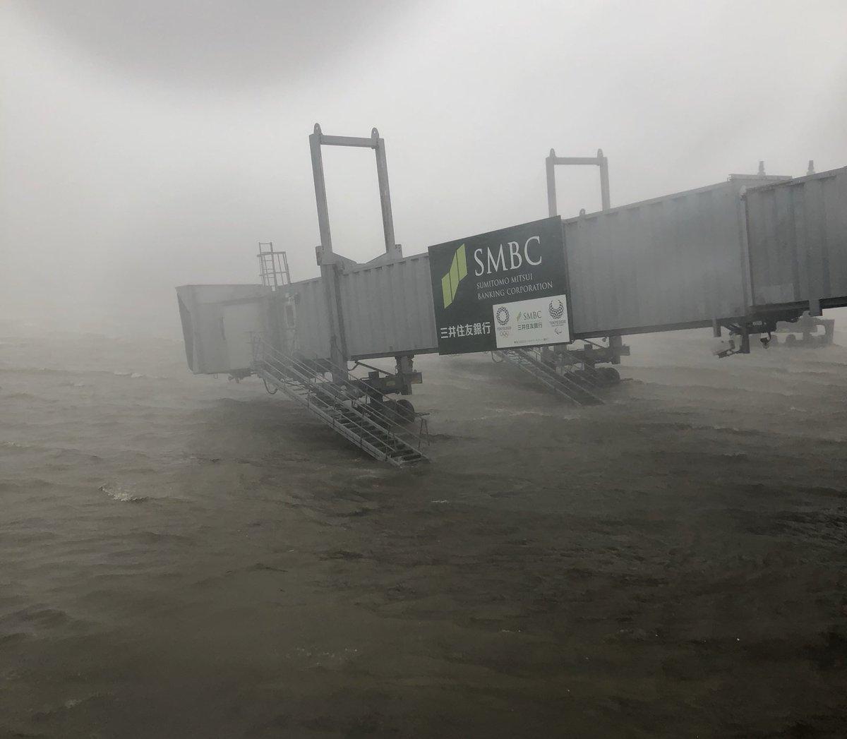 燕子撲日!水淹關西機場 專家指出關鍵原因