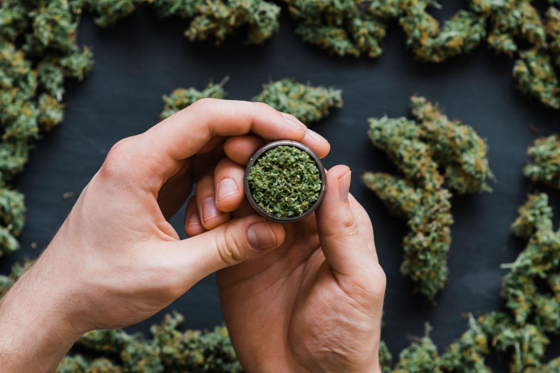 美加大麻合法,增稅收、拚經濟,還能救救生育率?