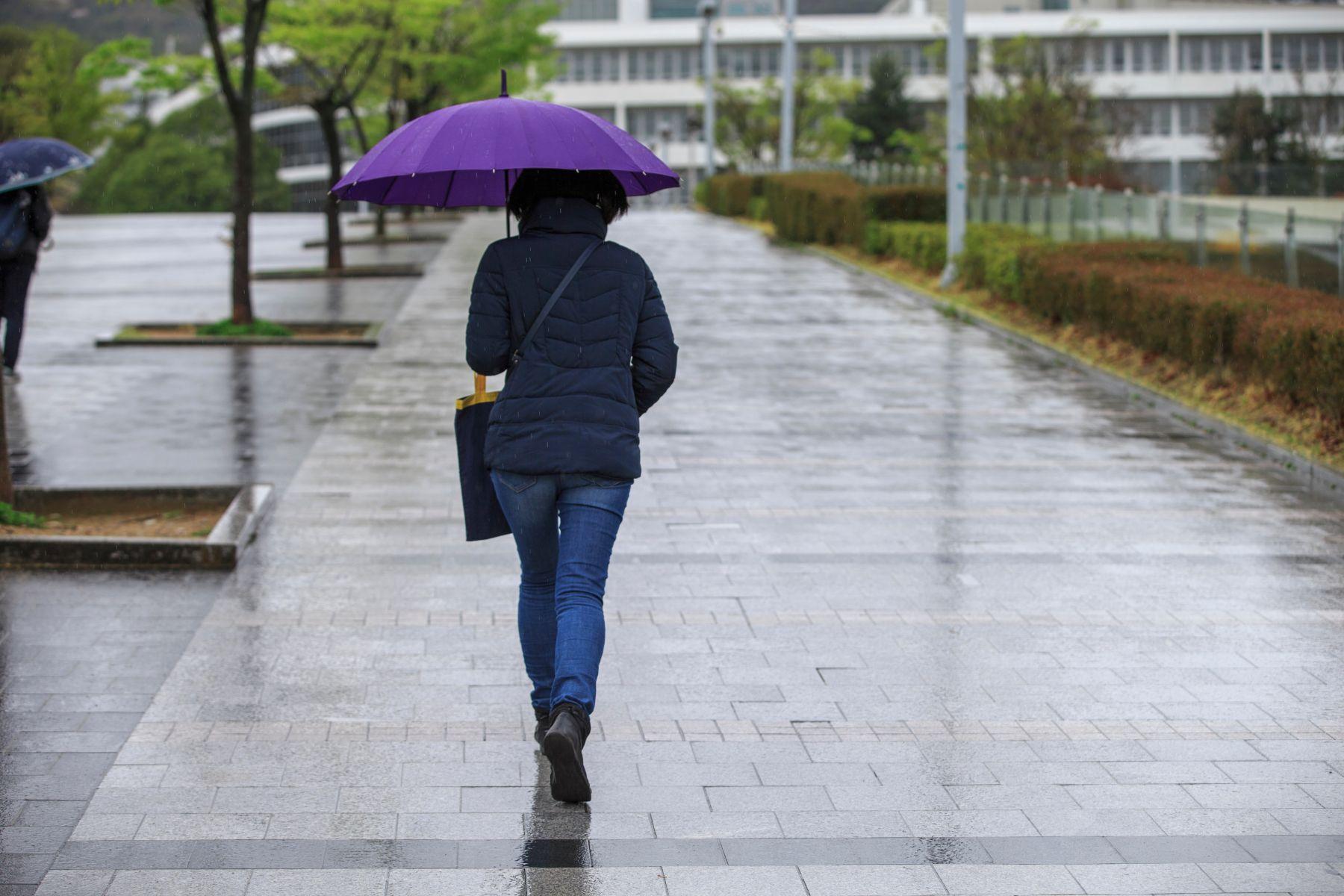 二月有強颱代表台灣今年受颱風影響大?氣象專家解答
