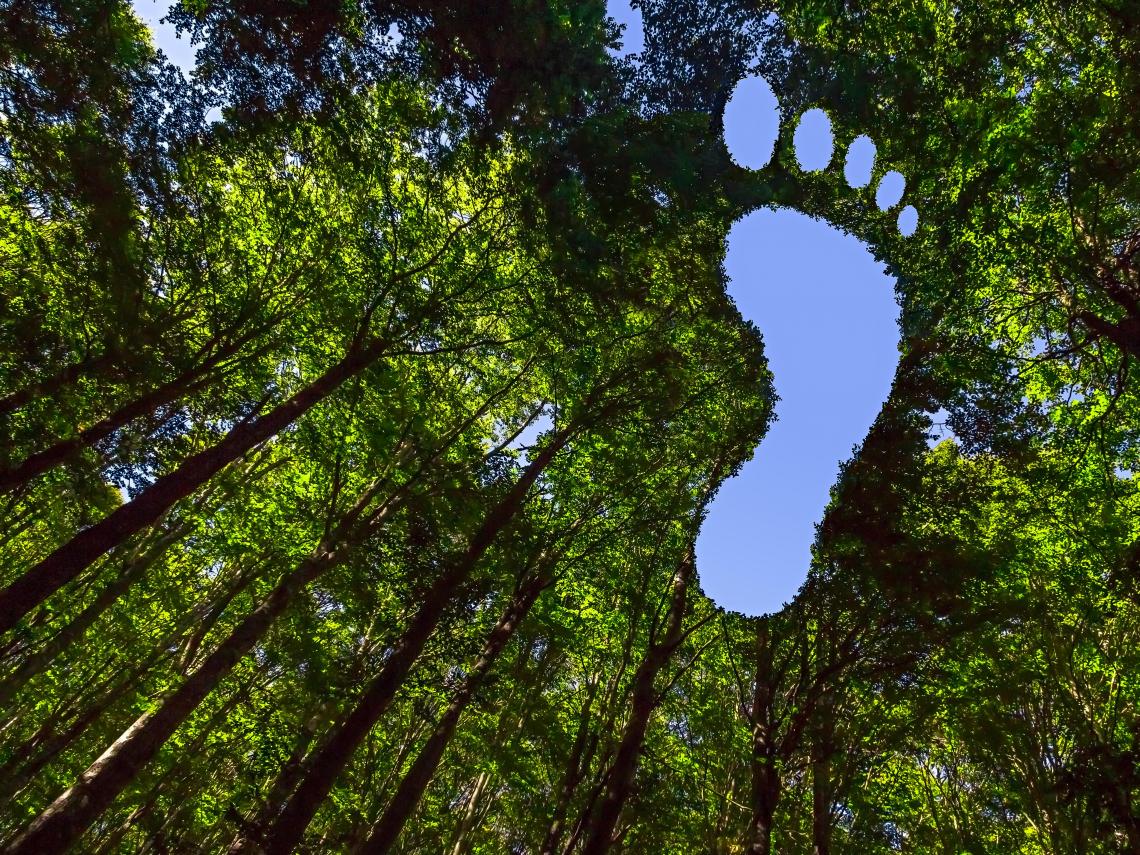 碳足跡定義是什麼?看懂碳足跡標籤才能真正綠色消費