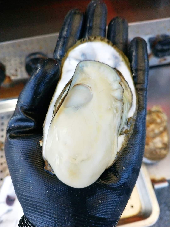 生蠔有手掌大、鮮蚵飽滿彈牙 媲美廣島大牡蠣 ~ 老饕才知道的台南隱藏美食