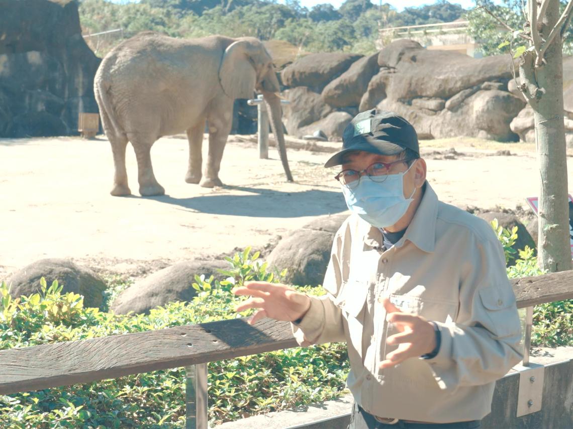在動物園工作好夢幻? 他被老虎追到差點沒命!