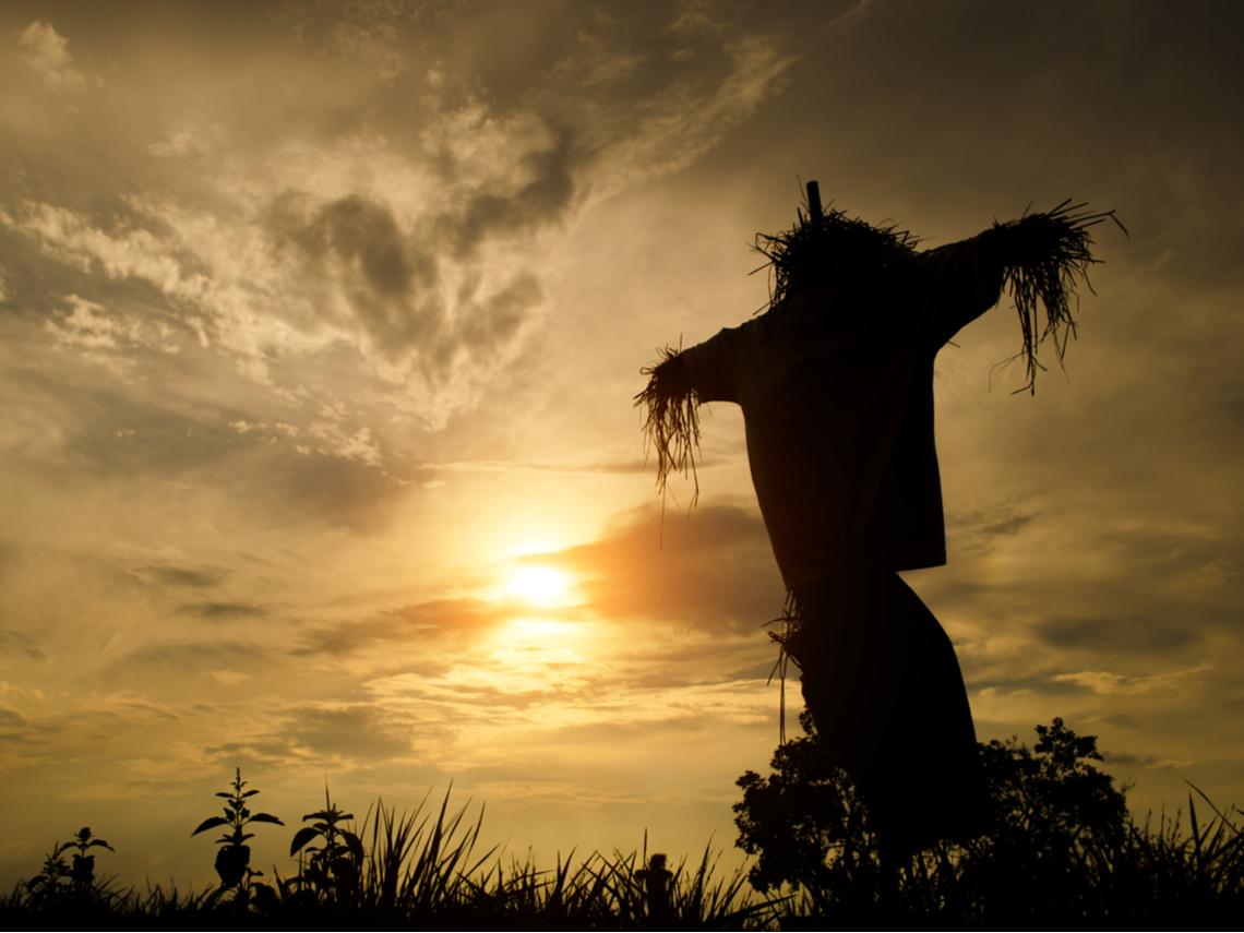 地獄來使託夢老翁「時辰已到」...用水泥固定的稻草人竟從田裡跳出來擋車,讓他多活好幾天