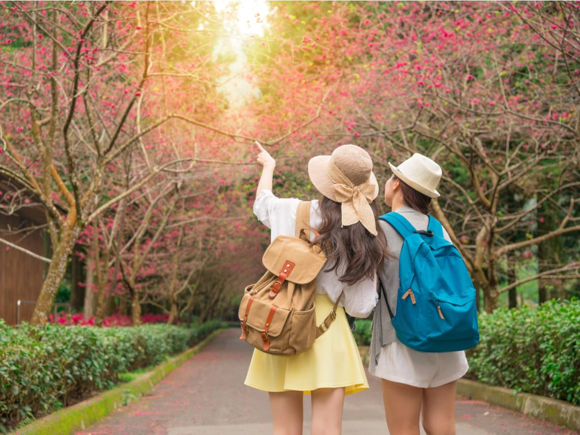真愛台灣,日本女生3年來台旅遊15次...她:台灣人非常喜歡日本文化,但我們真誠的交流很少