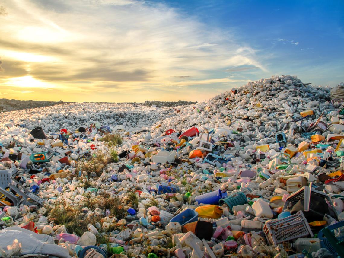 光一個塑膠瓶就有526隻受困 偏遠離島至少50萬隻寄居蟹死於塑膠垃圾
