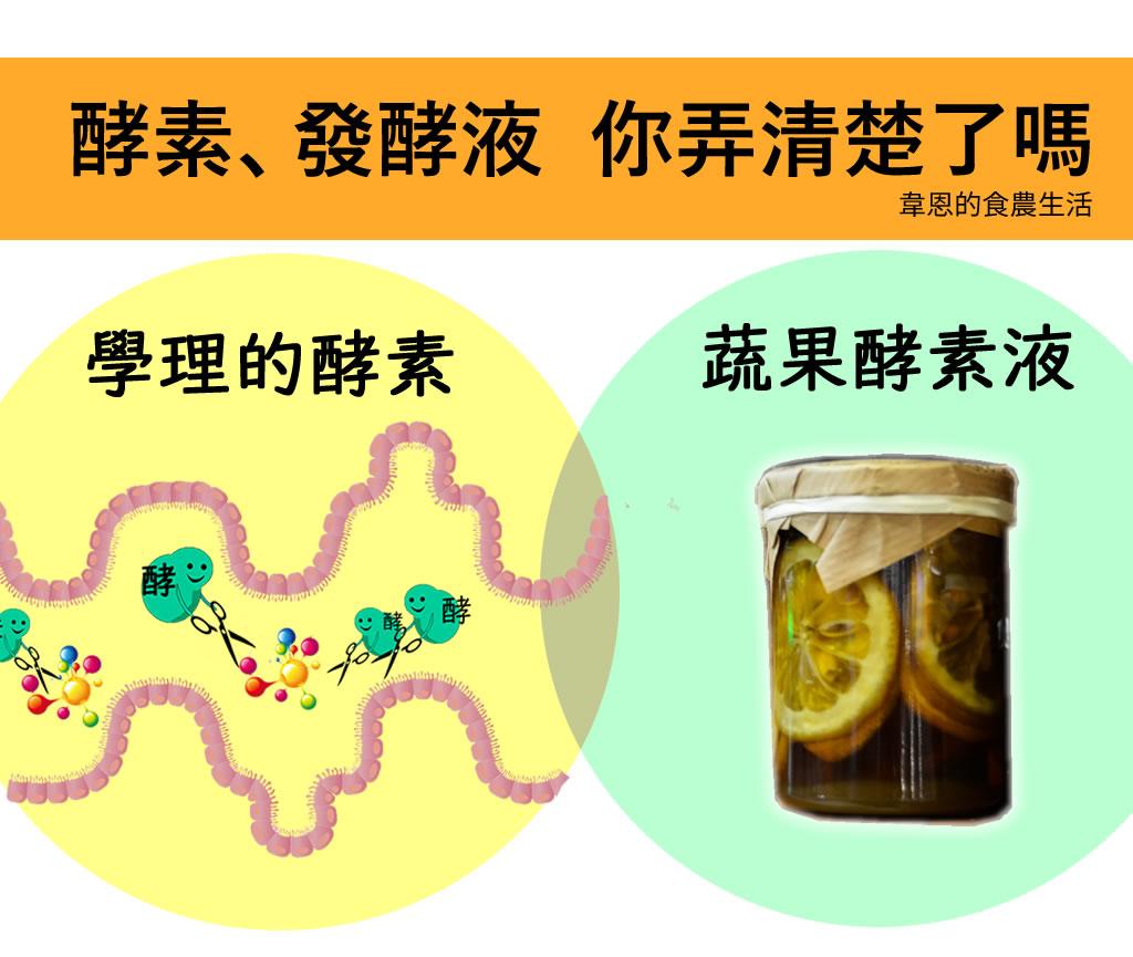 你還在自製蔬果酵素嗎?小心把黴菌吃下肚!一次搞懂:酵素、發酵液,哪裡不一樣?