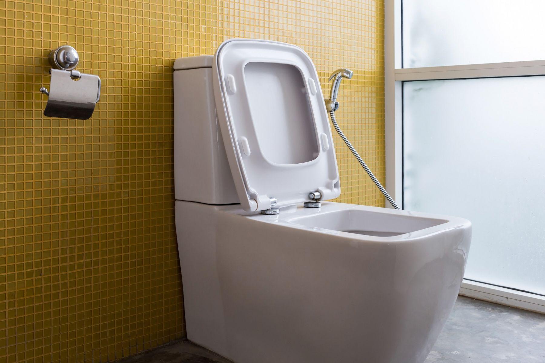 兩房格局,「廁所有窗」跟「View很好」只能選一個?眾人秒選這個