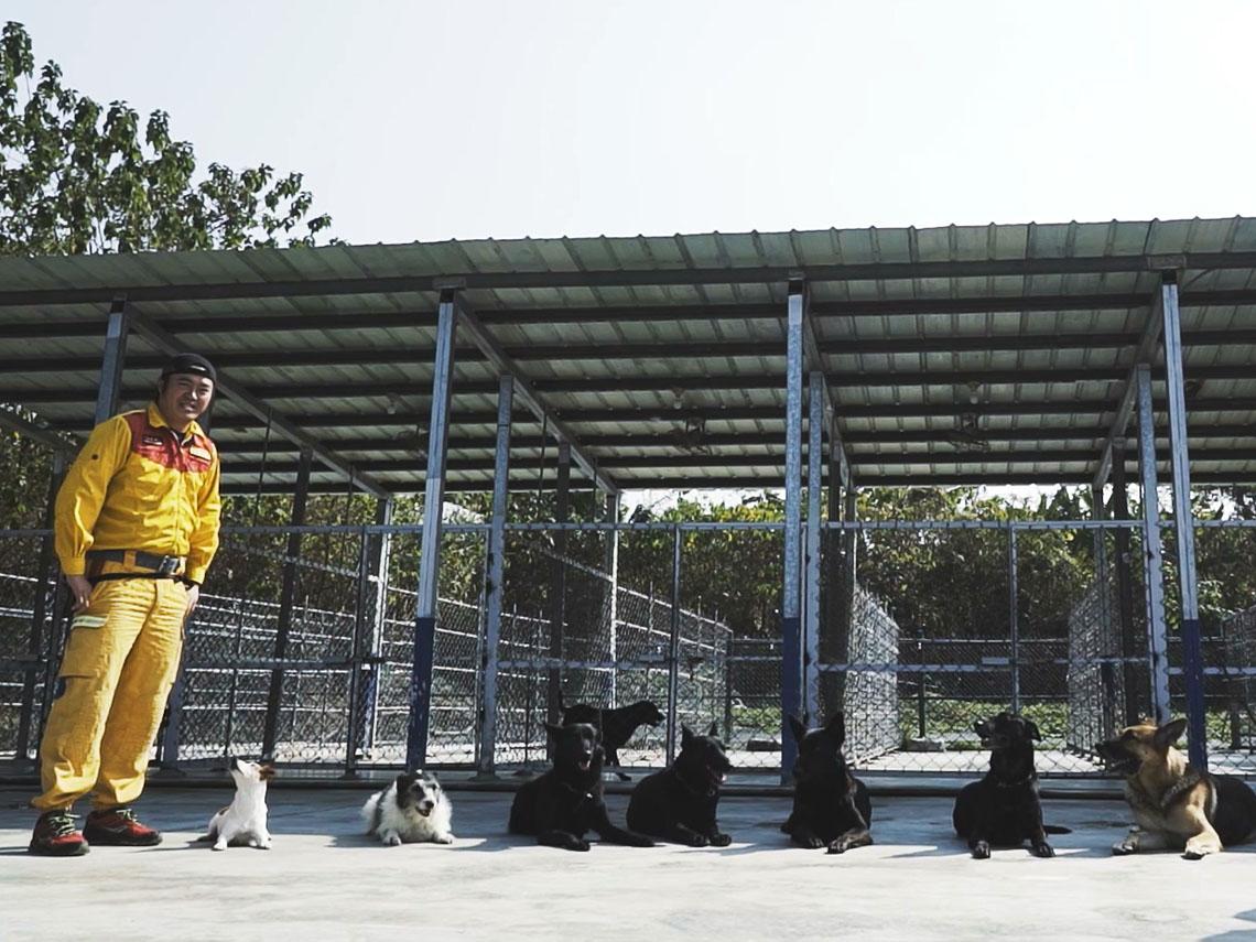 聯合國認證搜救犬亞洲僅9隻!7隻來自台灣!
