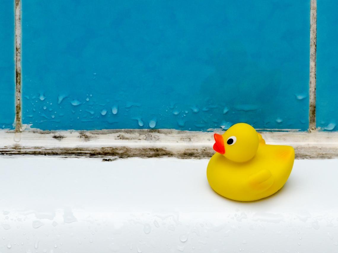 天氣悶又濕,如何防止浴室發霉?洗澡後順手一個動作,不怕浴室爬滿黑色黴斑
