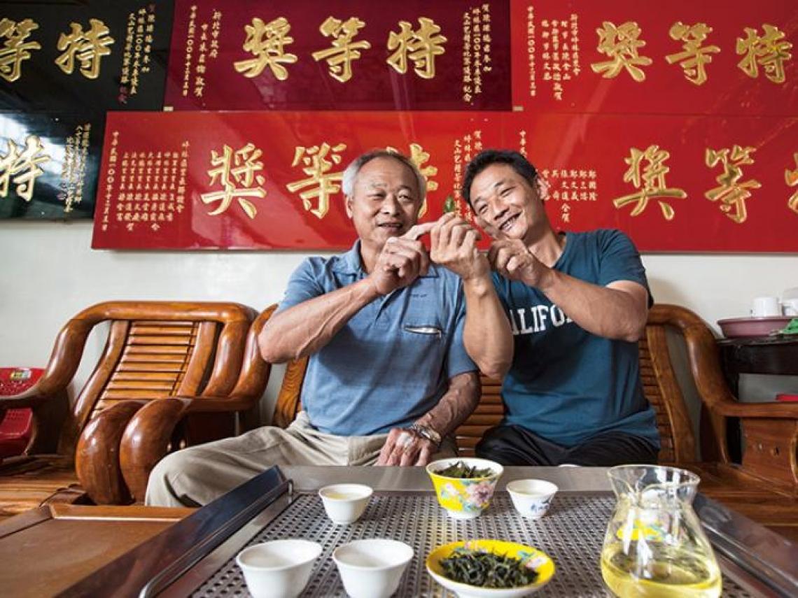 1台斤100萬!「我不是在巡茶園,就是在家泡茶…」看這對父子如何種出天價茶?