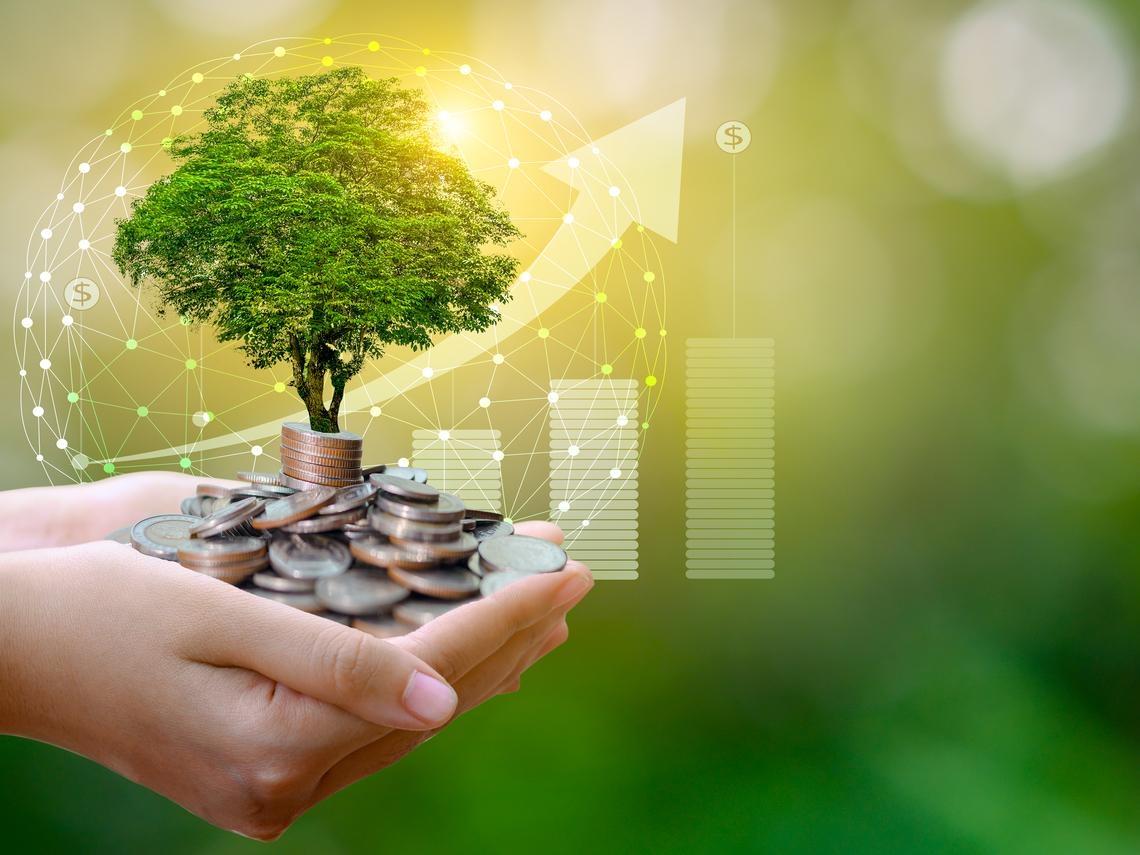 金融體系如何支持永續轉型?