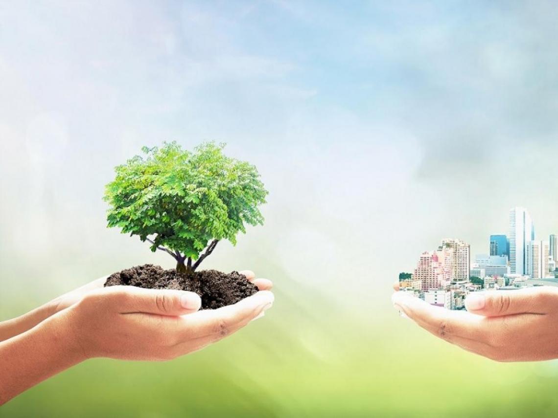 永續投資在新冠肺炎危機中的表現