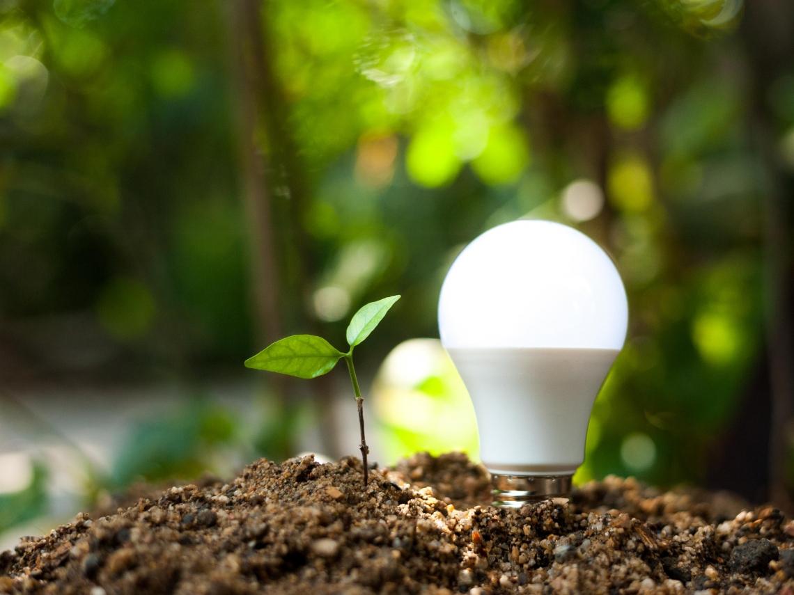「投入再生能源市場,我們別無選擇!」全球4大能源交易商都加碼的2種投資