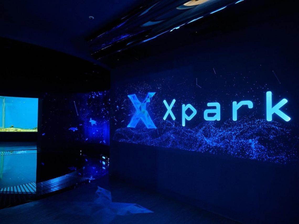遭批海底生物受傷 Xpark發聲明:絕無虐待動物!水母斷肢、觸手打結是自然現象