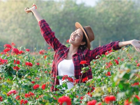 極簡生活,才能認真度過每一天!3方法讓我們的生活過得很快樂,人生充滿成就感