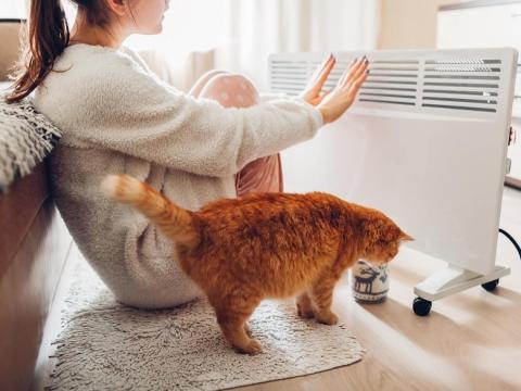 寒潮引爆》6大類電暖器優缺點一次解析!達人:使用時這5件事務必注意