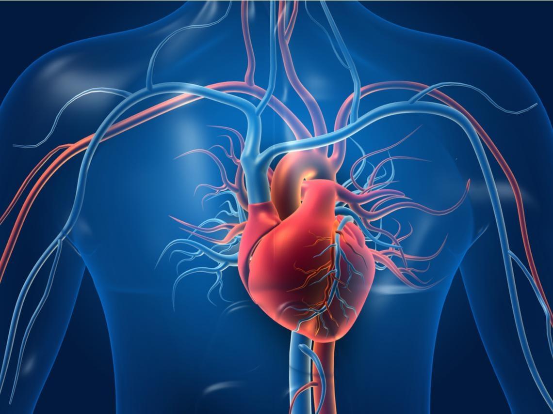 血管堵易突發心臟病,每天一招保養血管,改善心痛、胸悶