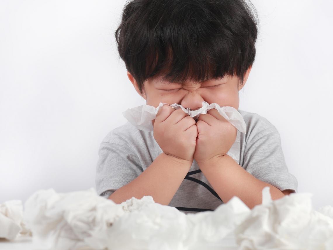 打噴嚏、皮膚癢… 中醫親調「5道藥膳茶飲」 趕走惱人過敏