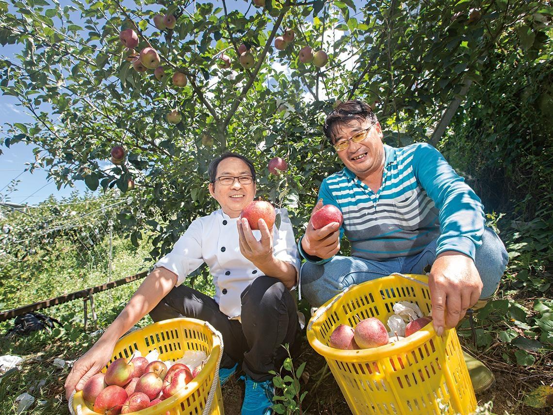 蘋香滿梨山