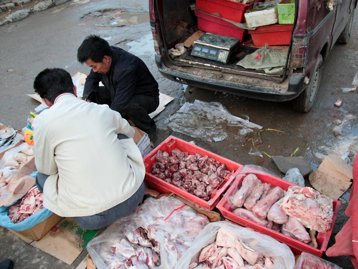 武肺病毒源頭最新發現!WHO追查華南海鮮市場 專家鎖定「2種動物」