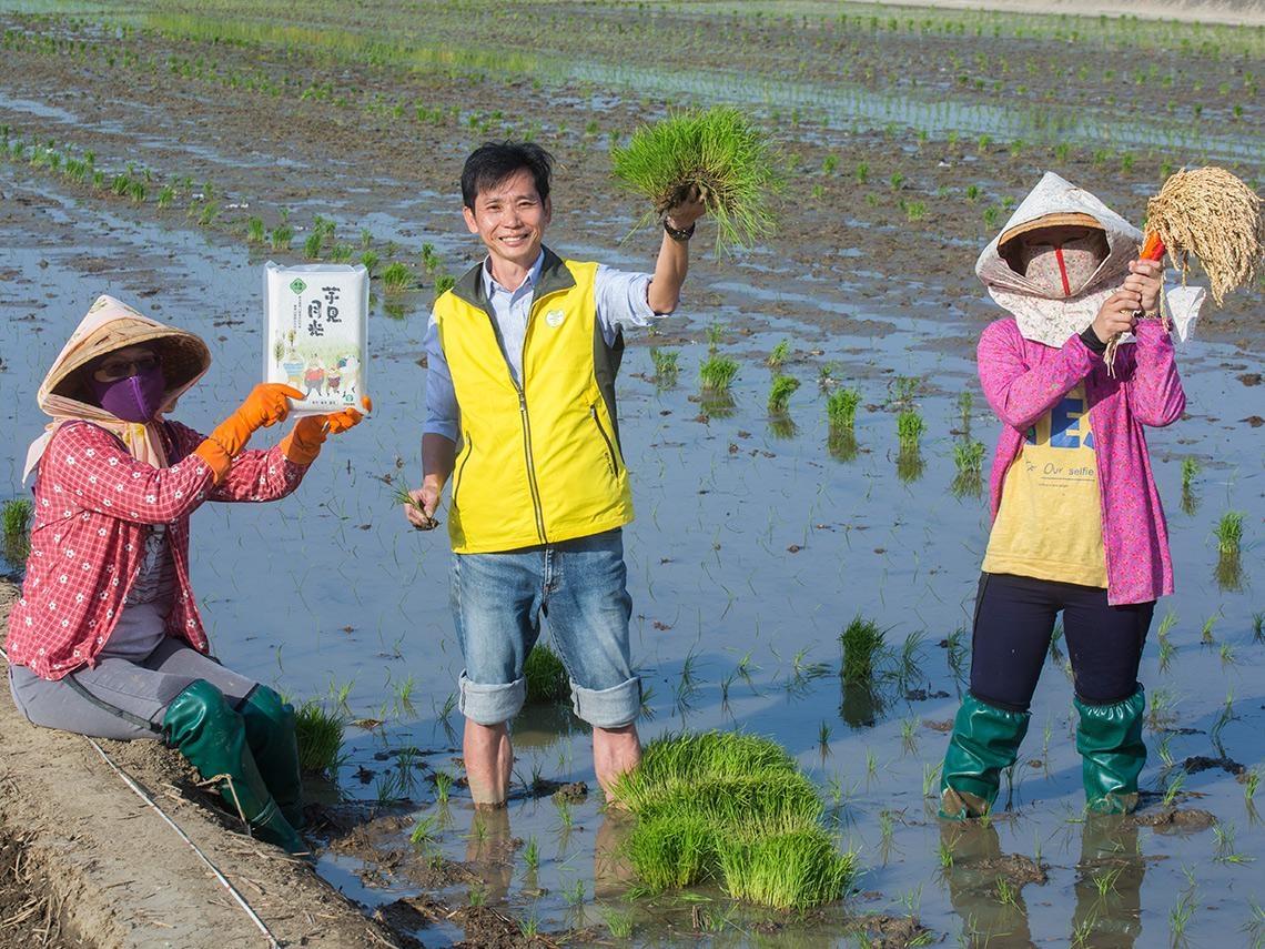「小時候非常討厭水稻…」 曾發下豪語「不種田」的他 如何成為「台版越光米」推手?