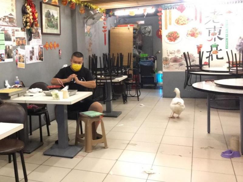 攤商送肉、房東免租,疫情害收入減8成他卻感到更溫暖...一個台灣女婿嘆:中國都沒見過的,我卻在台灣都看到了