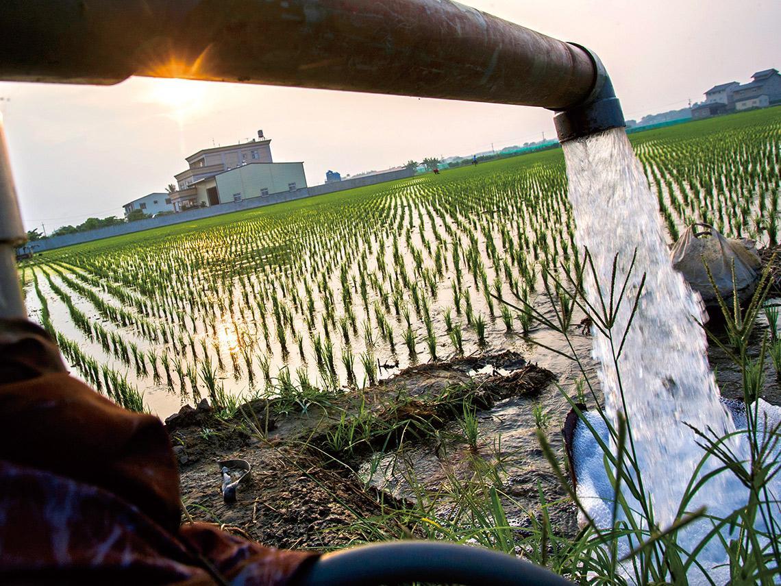 水資源危機》半世紀最慘旱災 凸顯扭曲用水結構 揭開台灣留不住水真相 水利署怎麼救?