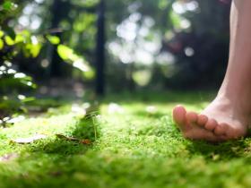 整天在家引發頭痛、失眠,是沒有接地氣!白雁簡單一動作,促進排除濕氣和倦氣