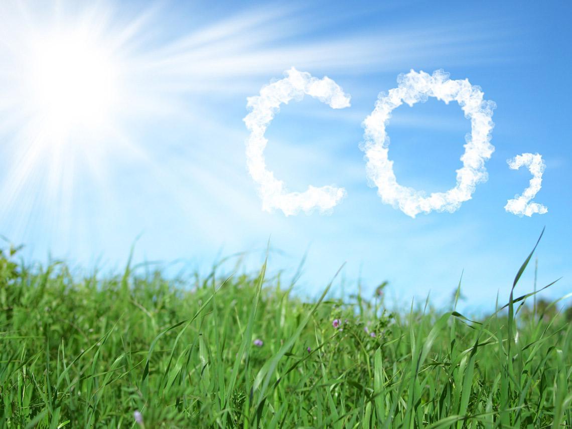 碳中和商機起飛 再生能源、儲能產業及電動車 將迎來未來五到十年的黃金時期