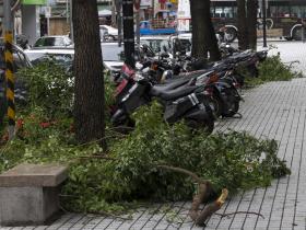 璨樹颱風「螺旋雨帶」還沒到位! 專家曝北部風雨爆發時刻 「最好別外出」