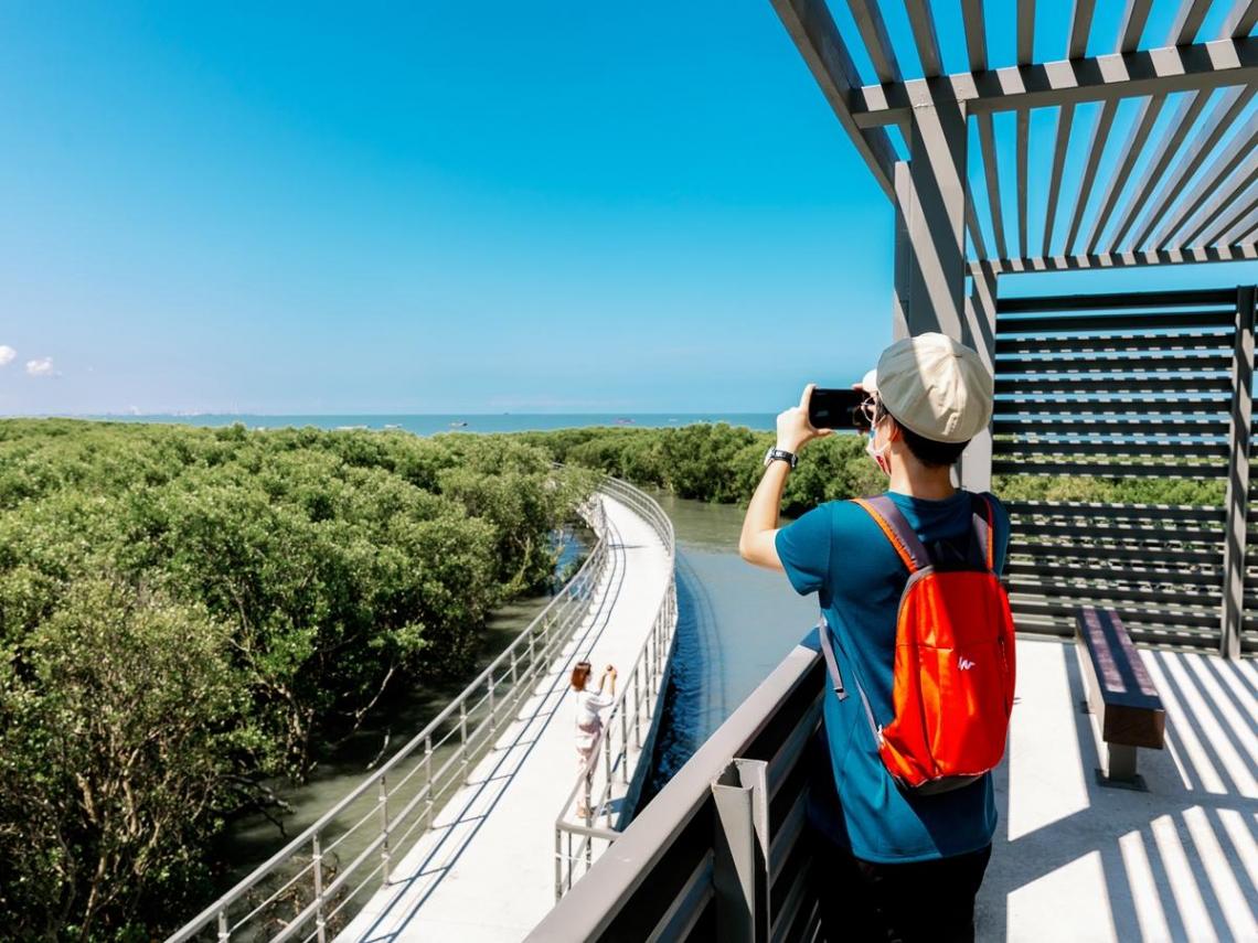 芳苑濕地紅樹林海空步道 彰化人文生態打卡新景點