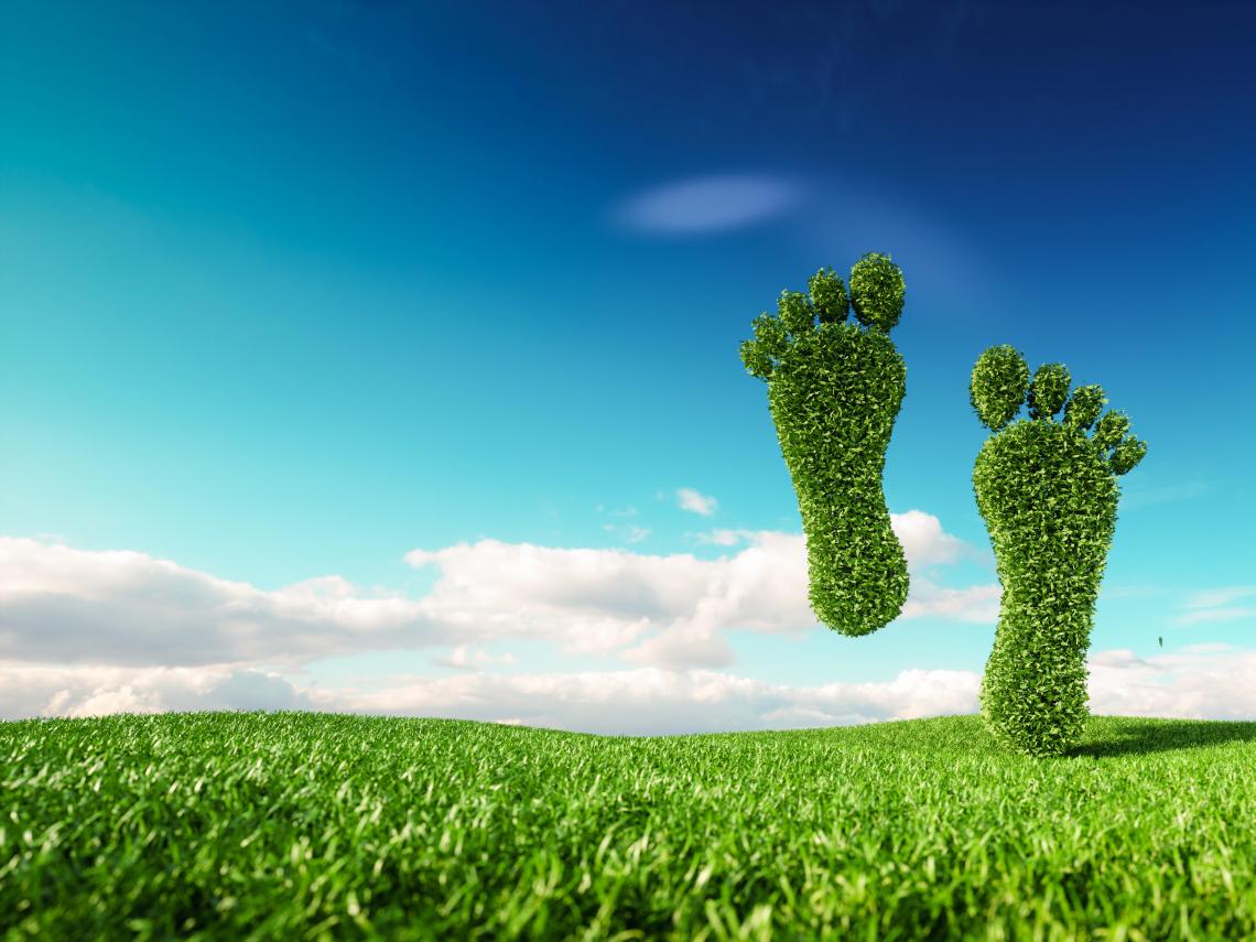 「碳足跡」的起源是什麼?用減碳 App 做個人碳中和就夠了嗎?