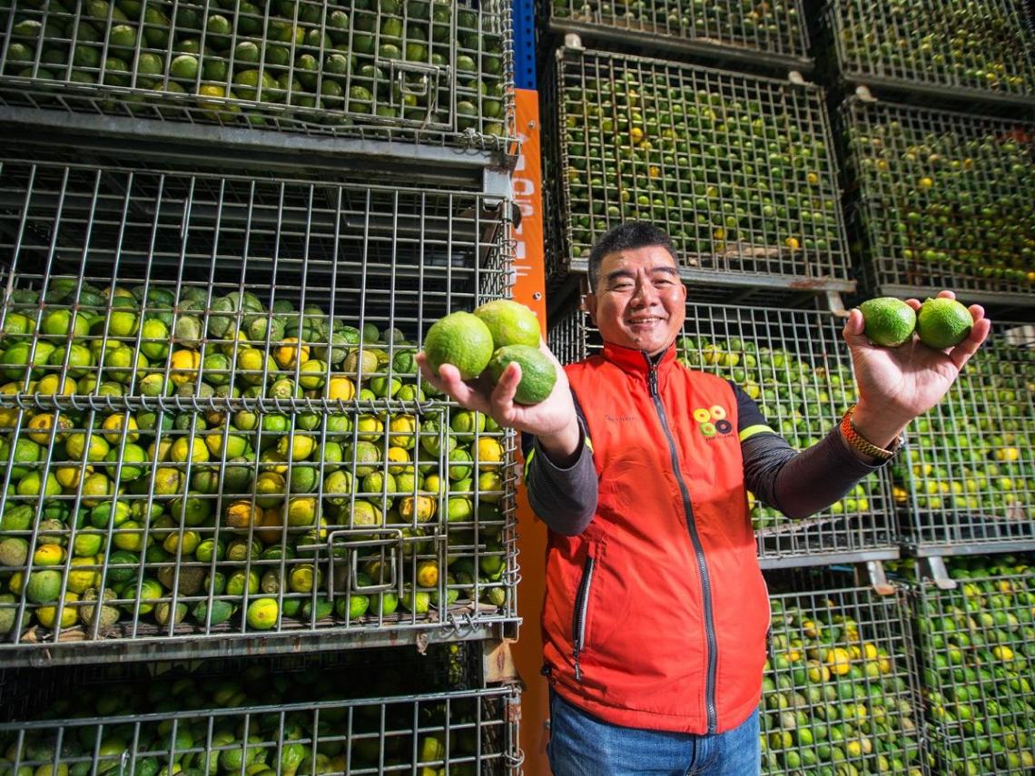 一個貧農之子 如何拚成台灣檸檬王?