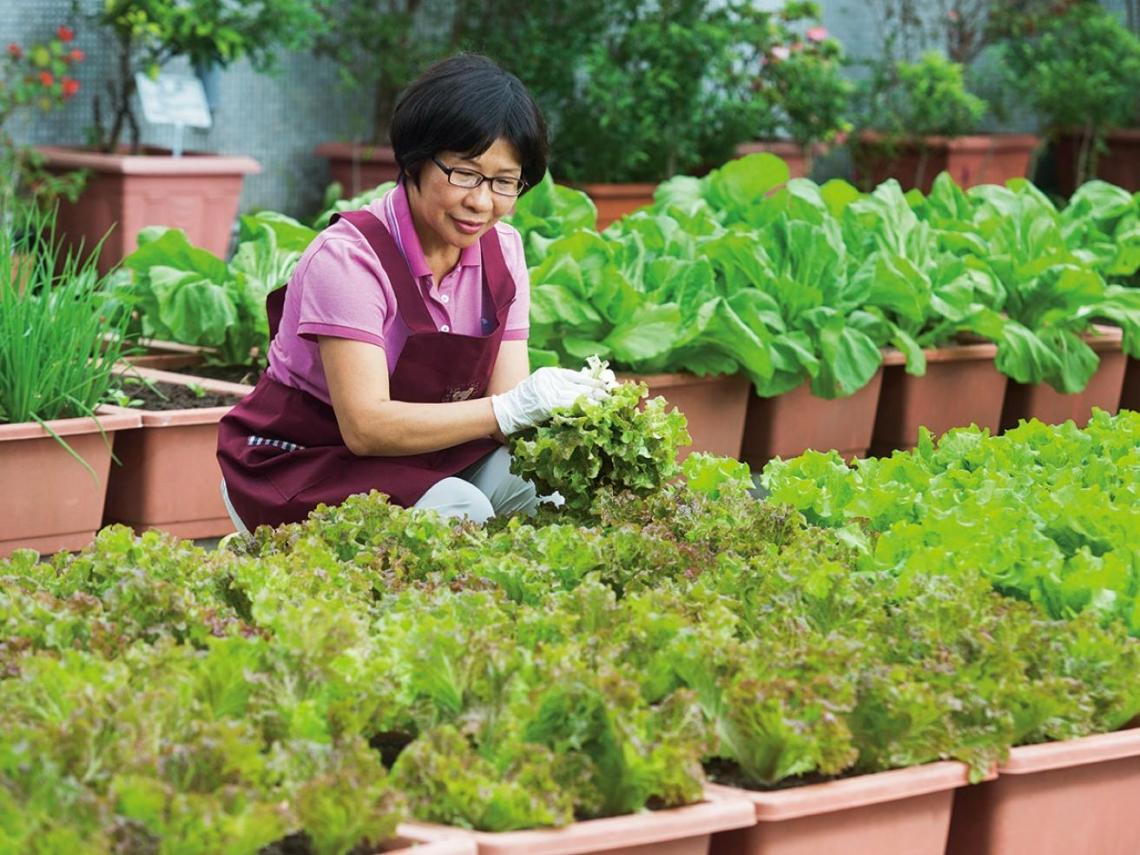 經手千金萬銀 她在園藝遇見最強的力量