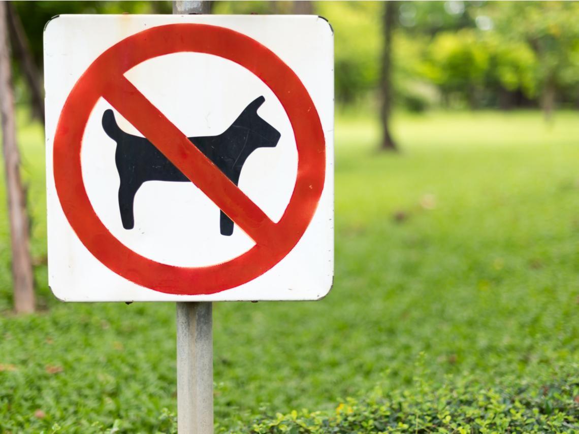 「華人與狗不可入內」解謎