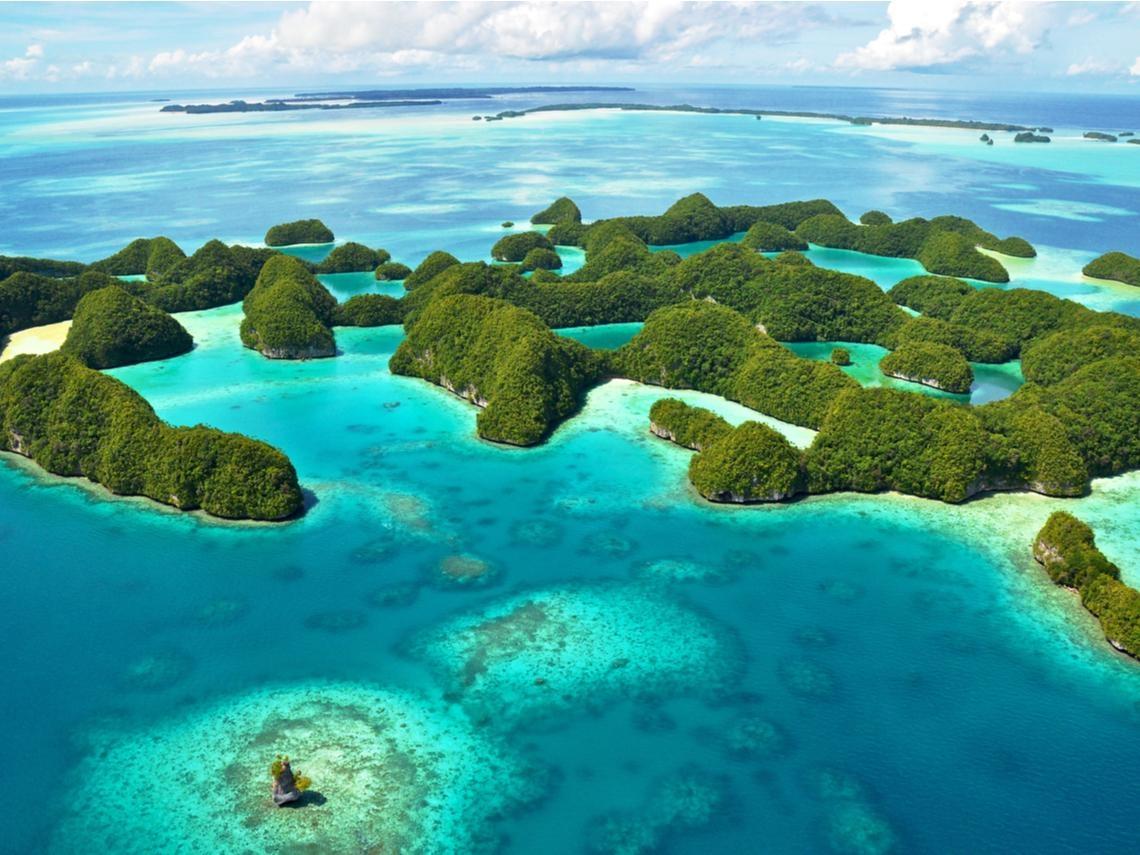 帛琉.美娜多.生態之旅