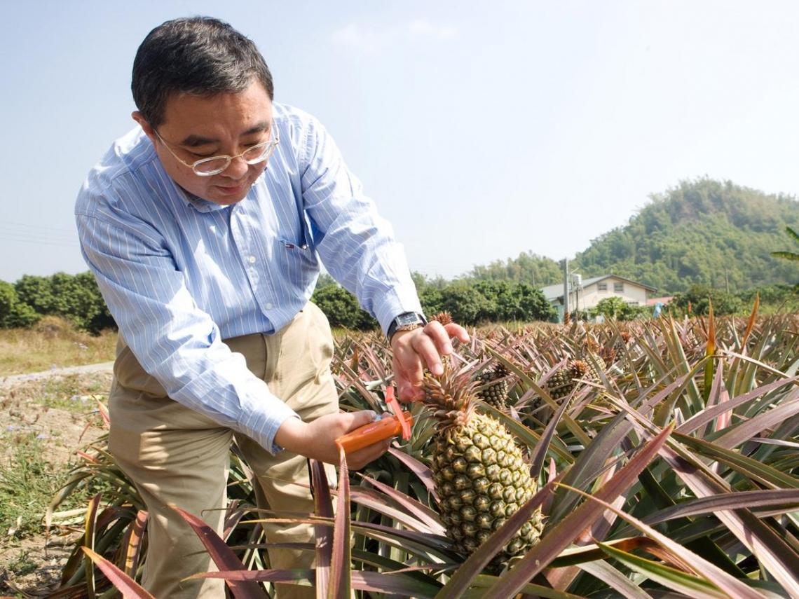 水果達人為台灣農民拚出新出路