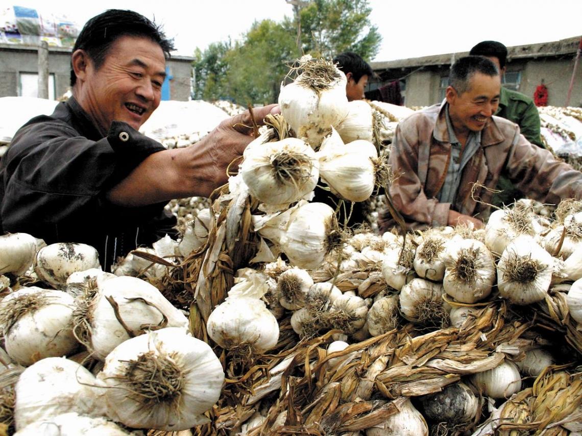 中國經濟「奇兵」招招致命